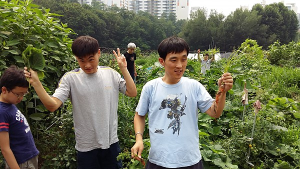 농작물 수확